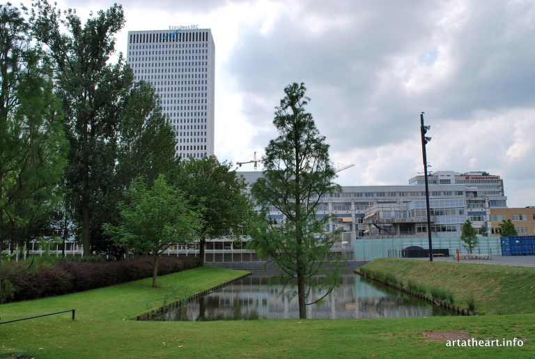 View of the Erasmus MC from the Museumpark