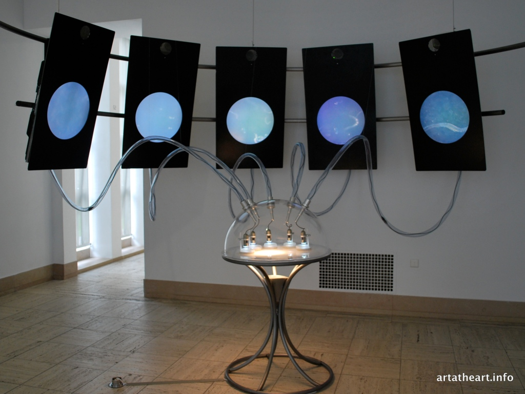 Microscopic Opera (steel, aluminum, perspex, microscopes, C. elegans, TV screens, computers, speakers)
