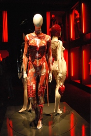 Stage costume worn by Mylène Farmer, 2009