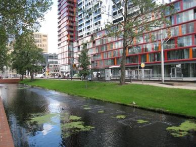 Job Koelewijn, 2001